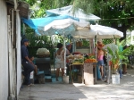 Maria\'s Fruit Stand