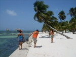 Throwing coconuts