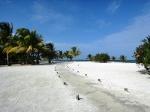 Gorgeous Belize beach
