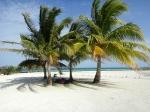 Dreamy tropical belize beach