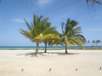 Gorgeous Belize beach