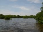 Touring Northern Caye lagoon