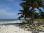 Beach at Northern Caye