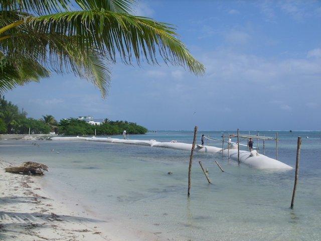 Boca Del Rio park sand restoration project