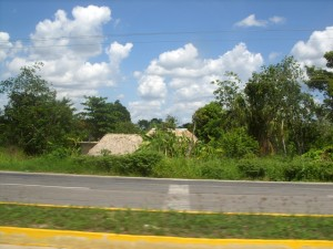 Road side houses