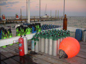 Diving San Pedro Belize pictures