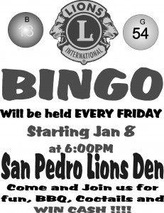 Lions Club Bingo