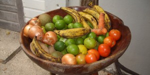 Vegetable & fruit bowl