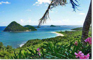 Caribe Pro