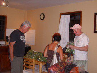 Organic Farming Belize Central America