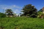 Green Belize