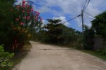 north ambergris caye roads