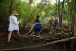 rich maya history