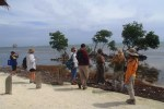 mangrove transplanting projects