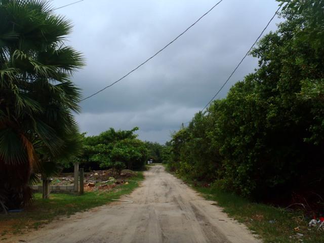 weather in san pedro