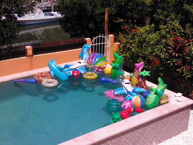 blow up pool toys