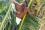 climbing a coconut tree