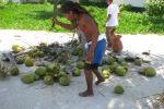 coconut leo on the beach at grand caribe