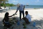 remove coconut meat