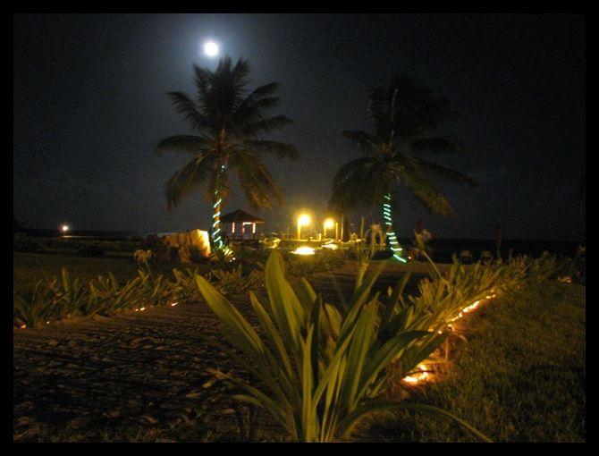 blue moon belize at grand caribe resort
