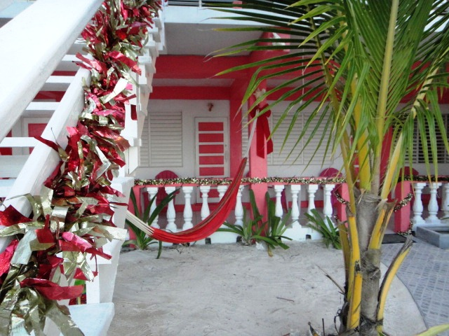 conch shell inn