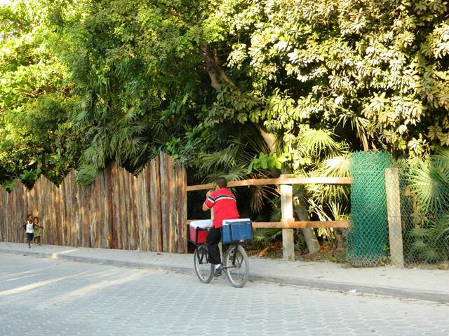 stylish fence at xanadu belize