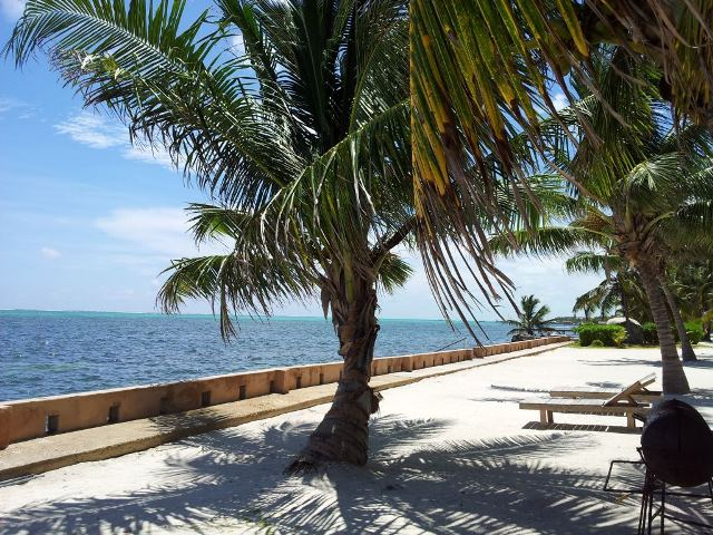 view at coco locos belize