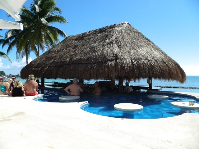 swim up pool bar