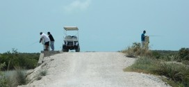 North Ambergris Caye Birthday Joyride