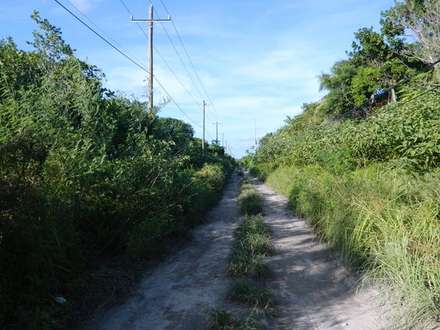 roads in north ambergris caye