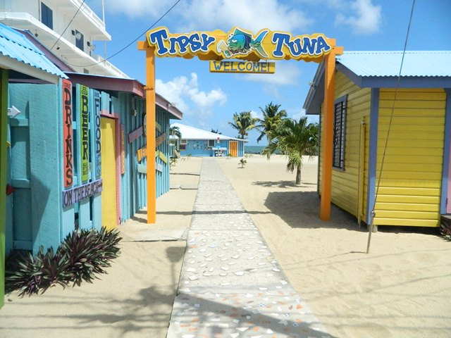 tipsy tuna placencia belize