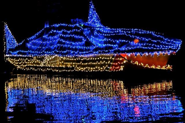 lighted boat parade tacogirl.com