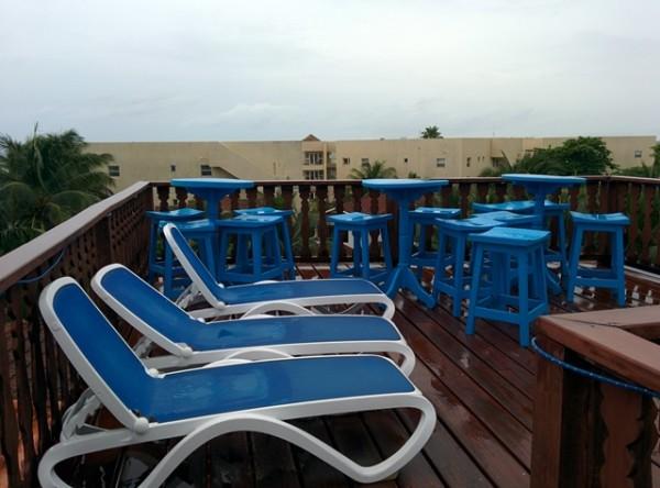 Blue Tang Belize