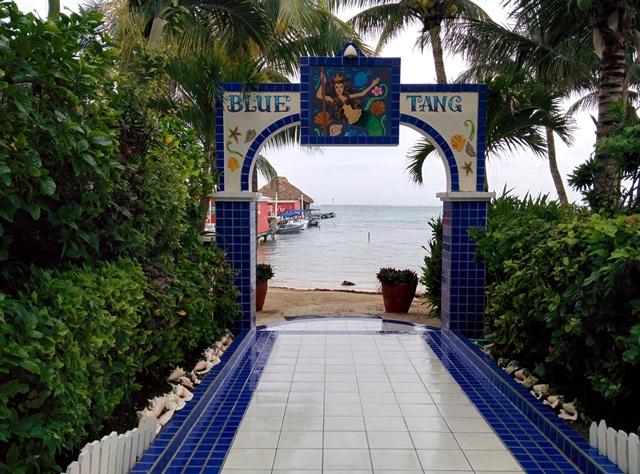 Blue Tang Inn