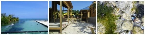 Secret Beach Ambergris Caye