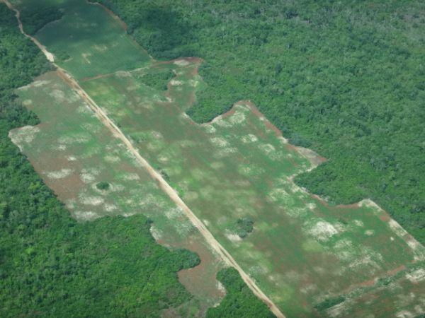 Flying to Corozal Belize