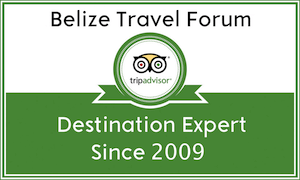 tripadvisor destination expert